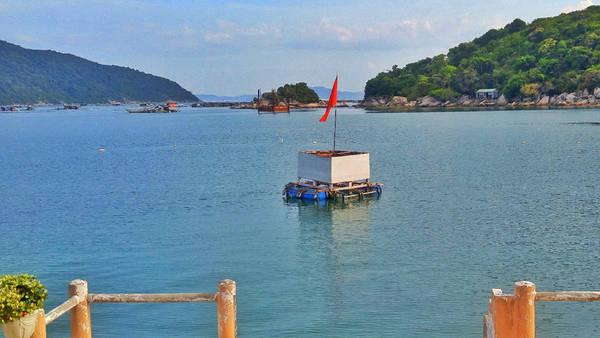 Ngút ngàn màu xanh trên cung đường biển Nha Trang – Tuy Hòa - Ảnh minh hoạ 7