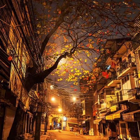 Tại triển lãm lần thứ 2 của Xuân Chính với chủ đề Góc nhỏ Hà Nội, anh đưa ra trưng bày các hình ảnh vẫn là những góc phố quen của Hà Nội, vẫn là những khoảnh khắc trong 4 mùa, hoa lá, có cây, thiên nhiên, con người… nhưng người xem sẽ thấy một Xuân Chính với dấu ấn và khác biệt riêng.