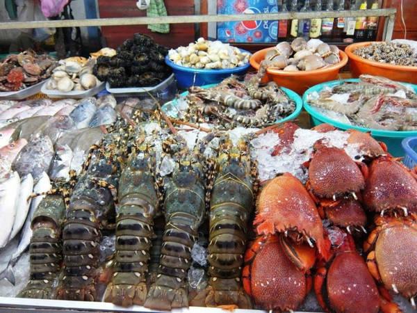 Hải Phòng được thiên nhiên ban tặng cho sự trù phú về hải sản cũng như những giá trị kinh tế mà biển mang lại. Bởi vậy, bãi biển Hải Phòng luôn thu hút được lượng đông khách du lịch đến hàng năm. Khó có thể tìm được một miền đất nào mà du lịch biển lại dễ dàng, giá rẻ, cảnh đẹp nên thơ như Hải Phòng.