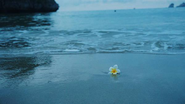 Mùa hè ở Cát Bà luôn đầy ắp nắng, nhưng cái nắng của vùng biển đảo dường như dịu bớt nhờ những bờ biển xanh mát mắt và lộng gió. Cát Bà luôn mang đến một cảm giác bình yên.