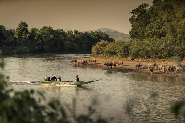 Ngoài việc tận hưởng những dịch vụ cao cấp từ khu nghỉ dưỡng du khách có thể tham gia hành trình khám phá rừng già cùng những con voi hoang dã đã được huấn luyện, hay du ngoạn trên sông Mê Kông, hoặc ghé thăm những địa điểm du lịch nổi tiếng trong khu vực.