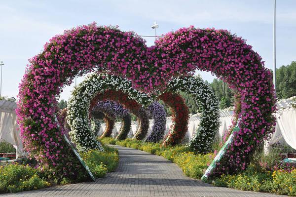 Lối vào Dubai Miracle gồm nhiều cổng vòm hình trái tim phủ đầy hoa như mời gọi du khách tới tham quan. Du khách sẽ thấy như đang thưởng ngoạn một triển lãm nghệ thuật đầy hấp dẫn khi khám phá những khu trưng bày hoa đẹp mắt tại đây. Những thiết kế này đều được thay đổi theo mùa. Ảnh: IdeaChannels. Ảnh Minh An.