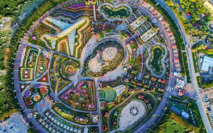 400 nghệ nhân trồng hoa phải mất 60 ngày để tạo nên khu vườn, nơi có hơn 60 loài hoa khác nhau, trong đó có nhiều loài hoa hiếm gặp ở Trung Đông như hoa mỏ hạc, dạ yến thảo... Ảnh: Dubai Miracle Garden.