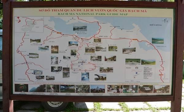 Vườn quốc gia Bạch Mã được thành lập vào năm 1991, tổng diện tích tự nhiên hơn 37 nghìn ha, bao gồm trên 36 nghìn ha đất lâm nghiệp và 522 ha đất khác. Đến cổng vườn quốc gia, du khách sẽ được hướng dẫn các tuyến tham quan, đi xe hơi theo con đường lên đến trạm dừng chân là 19 km. Ảnh: Thanh Tuyết.