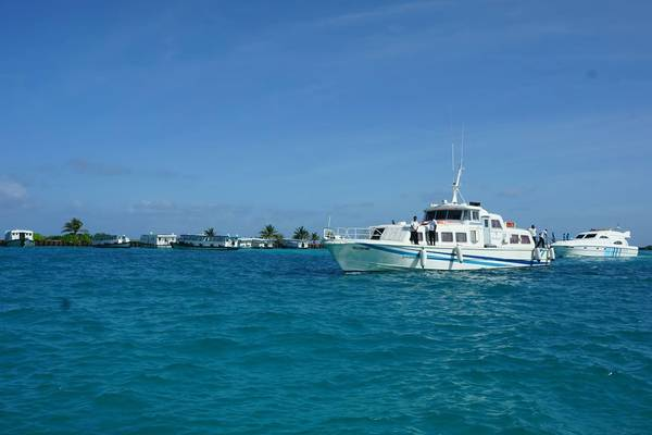 Tàu cao tốc đưa du khách ra đảo resort
