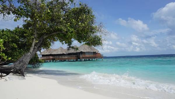 Villa ven biển tại Bandos resort