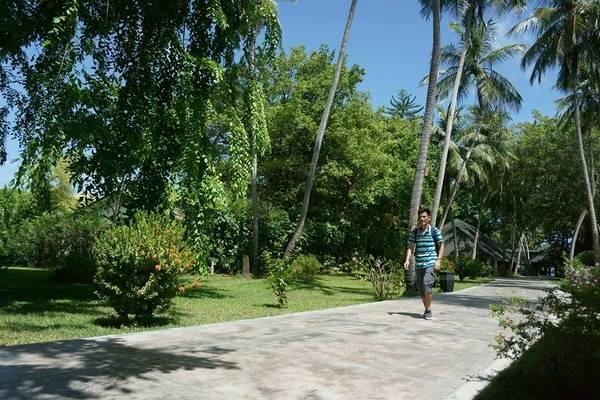 Đường đi dạo trên Paradis resort