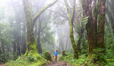 hanh-trinh-trekking-duong-nui-o-dat-nuoc-nepal-huyen-bi-ivivu-3