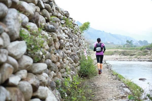 VMM 2017 gồm 5 cự ly: 10 km, 21 km, 42 km, 70 km và 100 km. Trong đó những vận động viên chạy cự ly 100 km xuất phát từ 22h30 ngày 22/9, phải hoàn thành phần thi trong vòng tối đa 24 giờ. Năm nay, giải có sự góp mặt của Đại sứ Anh tại Việt Nam Giles Lever, nhà văn Trang Hạ, MC Thuỳ Dung và Hoa hậu Hương Giang.