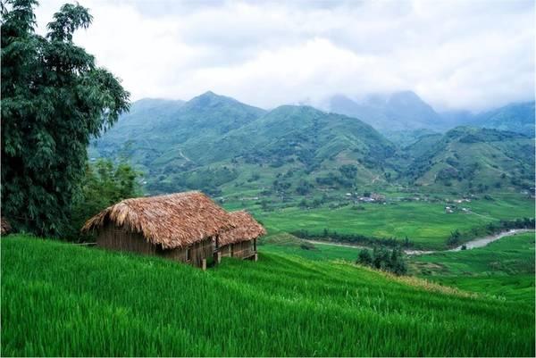 Lào Cai Tháng 9 là thời điểm bước vào mùa lúa ở Tây Bắc. Một trong những điểm ngắm lúa đẹp nhất chính là Sa Pa, Lào Cai. Thời điểm này lúa mới chớm vàng nhưng dự kiến giữa tháng 9 bắt đầu chuyển chín rộ. Ảnh: Eco Palms House.