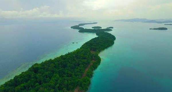 Tại hòn đảo xa xôi Owarigi thuộc quần đảo Solomon ngoài khơi nam Thái Bình Dương, hơn 1.000 người dân bản địa đang sinh sống hòa bình với loài cá mập có chiều dài lên đến 3 m từ bao đời nay.