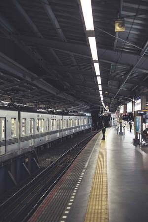 Với Figueras, đường phố là bối cảnh hoàn hảo để thể hiện mối liên hệ giữa người dân Tokyo và đô thị hiện đại của họ. Tính tự nhiên và không sắp đặt của ảnh đường phố giúp Tokyo trở nên bình dị hơn, khiến người xem cảm nhận được cuộc sống thực sự tại nơi đây.