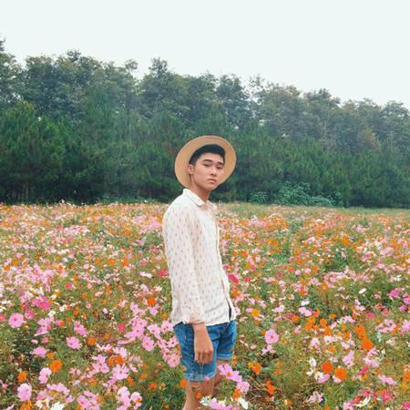 Vườn hoa cánh bướm bảy màu đang gây sốt ở Đà Lạt. Ảnh: giahuytran
