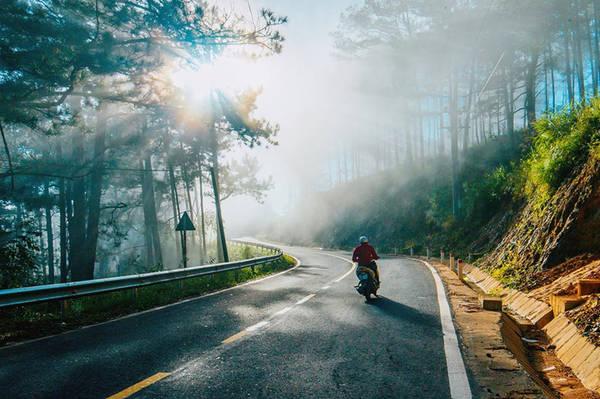 Đến Đà Lạt, chẳng cần vội vàng đi hết những điểm du lịch người ta vẫn kháo nhau, hãy thử thuê một chiếc xe máy, chinh phục những con đường thơ mộng nơi ngoại thành, bạn sẽ cảm nhận được sắc nét nhất vẻ đẹp ngọt ngào của xứ sở mộng mơ.