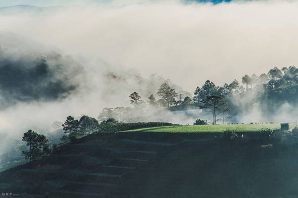 Trong làn sương mong manh, Cầu Đất hiện lên đẹp hơn bao giờ hết, những đồi chè xanh mướt cứ nối đuôi nhau ẩn hiện đến tít chân trời.
