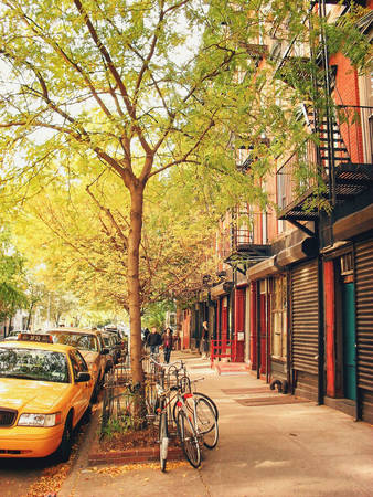 em-co-nghe-mua-thu-o-new-york-ivivu-1