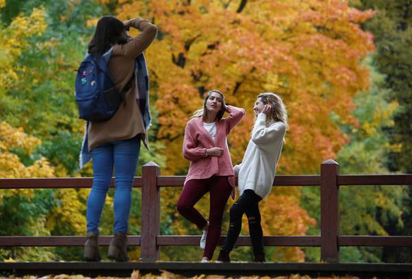 Nhóm bạn chụp ảnh dường như đang hòa mình vào cảnh sắc mùa thu tại khu vườn Neskuchny, Matxcơva, Nga. Ảnh: Sergei Karpukhin/Reuters