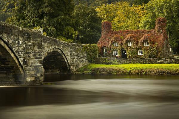 Khung cảnh sắc thu bên bờ sông Conwy, phía bắc xứ Wales. Ảnh: Christopher Furlong/Getty