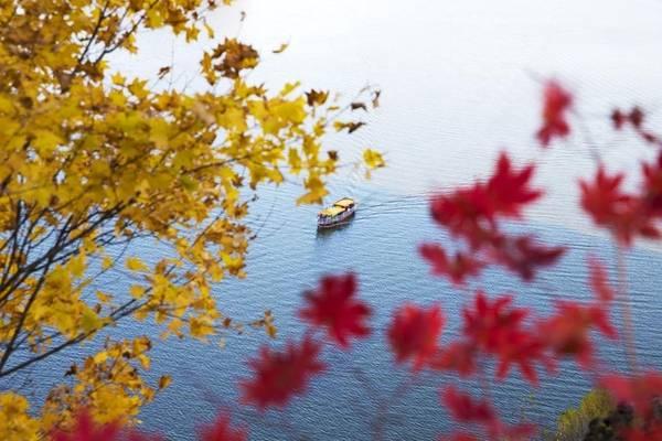 """Một góc thành phố Hoa Điện, tỉnh Cát Lâm đẹp như tranh với cành cây lá vàng, lá đỏ, nước hồ thu và """"con thuyền bé tẻo teo""""."""
