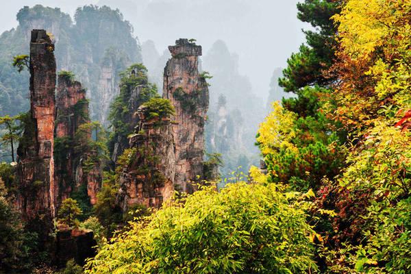 Khung cảnh kỳ vĩ của vùng rừng núi thuộc Vũ Lăng Nguyên (Trương Gia Giới, tỉnh Hồ Nam) được lấy làm bối cảnh siêu phẩm Avatar. Ảnh: Dreamstime Vũ Lăng Nguyên là một địa danh nổi tiếng ở Hồ Nam, nơi có những cột đá cao vút vươn thẳng lên bầu trời. Vào mùa thu, mây mờ che phủ đỉnh cột đá, thi thoảng lộ ra những mảng rừng vàng úa khiến du khách liên tưởng đến những cây nến khổng lồ