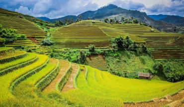 ruong-bac-thang-mu-cang-chai-tho-mong-mua-lua-chin-ivivu-2