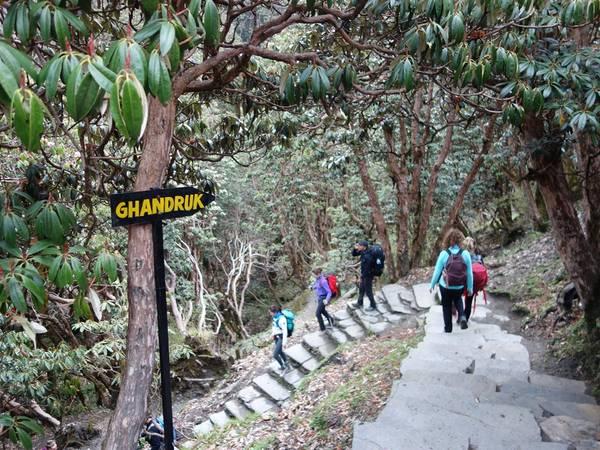 Một đoạn đường đến Ghandruk