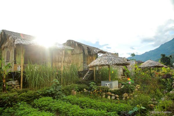 Những căn nhà gỗ yên bình đáng yêu ở Tả Van.