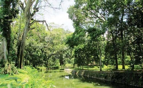 Dòng kênh xanh biếc ở Lam Kinh