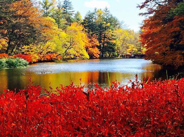 Suối nước nóng Jozankei ở Hokkaido đầy sắc màu