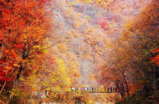 Một cảnh sắc thu đẹp ở ngay tại Seoul - r2rong