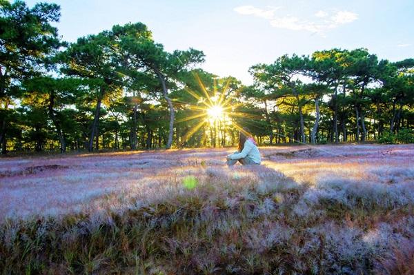 Khi cảm thấy chán phố thị xô bồ và muốn tìm một luồng gió mới, bạn có thể hòa mình vào thiên nhiên hoang sơ để thư giãn. Ghé chân tại những đồi cỏ hồng, du khách hãy hạn chế giẫm lên cỏ và xả rác nhằm bảo vệ cảnh quan và môi trường. Ảnh: Doãn Vinh.
