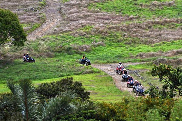 Đoàn du khách Việt trải nghiệm trò chơi lái xe địa hình tại Nature Park.