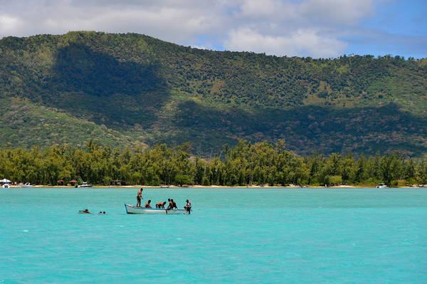 Du khách có thể lựa chọn thuyền to nhỏ phù hợp với số lượng thành viên và giá cả để tự do ra đảo bơi lội.