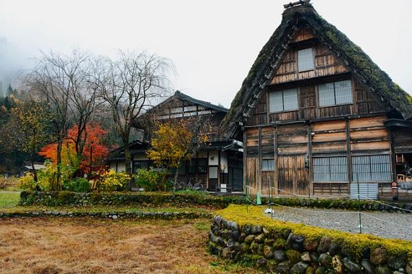 Ngôi làng đón khách quanh năm và mỗi mùa đều có sức quyến rũ riêng. Tuy nhiên, thời điểm lý tưởng nhất để tới Shirakawa là cuối thu đầu đông, khi những vạt cây rừng vẫn còn nhiều mảng đỏ vàng lãng mạn, nhưng chỉ cần sau đó vài ngày, cả không gian có thể chìm trong tuyết trắng xóa.