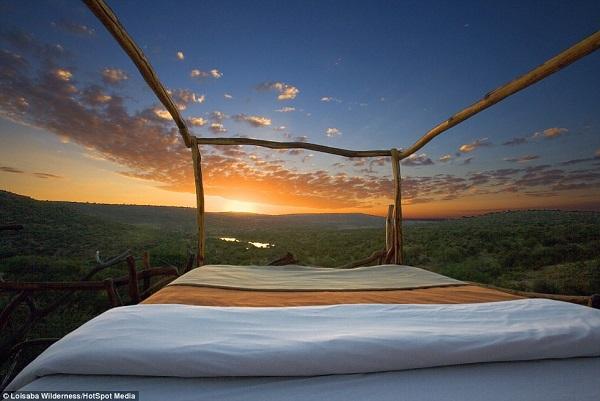 """Trải nghiệm ngủ trên giường """"Star Bed"""" tại khu bảo tồn Loisaba, ở Kenya được nhiều du khách lựa chọn. Đây là khu bảo tồn động vật hoang dã rộng 226,6 km2. Tới đây, khách sẽ được ngủ trên giường làm bằng thủ công dưới bầu trời đầy sao của châu Phi. Ảnh: Daily Mail."""