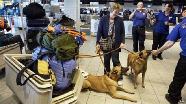 Chính phủ Hà Lan đã cử một đội cứu hộ gồm 18 người và 12 con chó đến Panama để hỗ trợ tìm kiếm. Ảnh: AFP.