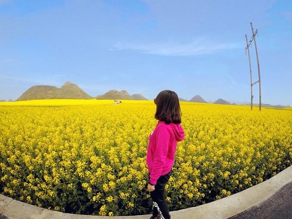 Một trong những đặc sản nổi tiếng ở La Bình là mật ong do nơi đây có đàn ong khổng lồ kéo tới mỗi mùa hoa cải trổ bông.