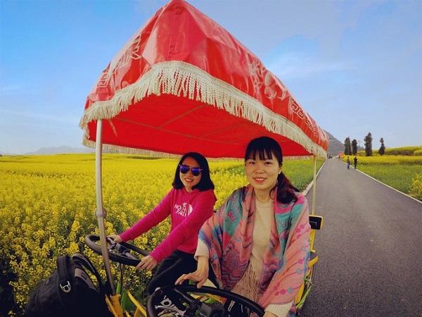 Thuê một chuyến xe điện hoặc gần gũi hơn là xe trâu, xe ngựa của người dân địa phương, đi dạo quanh những thửa ruộng hoa cải vàng xa tít tắp không có điểm dừng là trải nghiệm ấn tượng với bất kỳ ai.