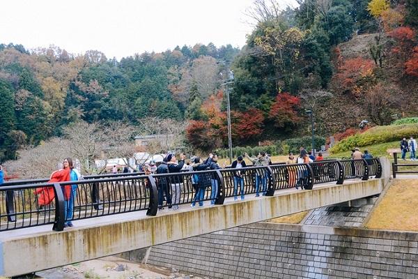 Tại làng Obara, du khách cũng sẽ có khá nhiều lựa chọn về địa điểm tham quan như công viên Obara Fureai, bảo tàng giấy mỹ thuật Washi-no-Furusato, trung tâm Hokubu Seikatsu Kaizen, Kawami Shikizakura-no-Sato...