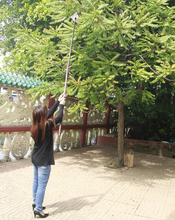 Trong sân có cây chùm ruột trĩu quả, người đi lễ có thể mượn cây khoèo của miếu, móc hái trái xin lộc.
