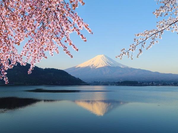 Phú Sĩ, Nhật Bản Đỉnh Phú Sĩ là một biểu tượng quan trọng trong văn hóa Nhật Bản, bởi vậy ngọn núi xuất hiện nhiều trong hội họa, nhiếp ảnh và văn chương nước này. Theo tài liệu ghi chép lại, đây là ngọn núi lửa còn hoạt động từ thế kỷ thứ 8, lần gần nhất nó phun trào là đầu những năm 1700. Vào ngày đẹp trời, bạn có thể nhìn thấy đỉnh núi cao hơn 3.700 m này. Ảnh: Shutterstock.
