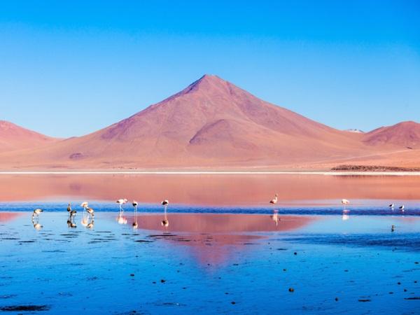 Andes, Bolivia Trải dài hơn 7.400 km, Andes là dãy núi dài nhất thế giới. Nằm ở cao nguyên của Bolivia, ngay sau dãy Andes hùng vĩ là hồ Laguna Colorada thường được gọi như vũng đỏ. Vùng nước nông và mặn nơi đây thu hút những con chim hồng hạc Andean về sinh sống, đây là loài hồng hạc hiếm nhất thế giới. Ảnh: Shutterstock.