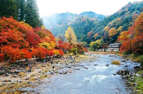 Điểm ngắm lá phong mùa thu đẹp nhất tại Nhật Bản