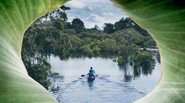Chèo kayak và đánh cá ở Amazon  Chèo thuyền kayak len lỏi ở các khu vực xa xôi của Amazon thuộc Colombia, Peru và Brazil, du khách sẽ được trải nghiệm ngủ trong rừng rậm, gặp gỡ các bộ tộc bản địa và trekking băng rừng ban đêm. Ảnh: largeminority.