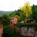 1 Mot goc reu phong o lau dai Heidelberg 1
