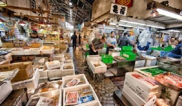 At the Tsukiji Fish Market.