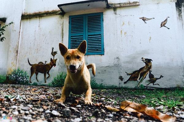 """Những chú chó được các họa sĩ vẽ trên tường ngôi nhà của anh Võ Thành Nghiệp. Anh Nghiệp cho biết các họa sĩ khảo sát rồi ngỏ lời vẽ tranh lên các vách tường nhà anh. """"Mình thấy mới lạ và đẹp nên đồng ý cho các họa sĩ vẽ"""", anh Nghiệp chia sẻ."""
