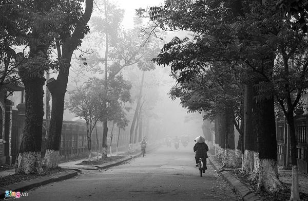 Những con đường phủ đầy sương trắng như những bức họa.