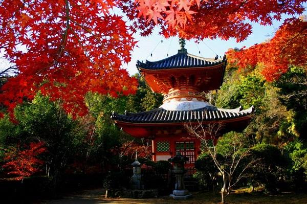 Đền Mitaki-dera: Trong số nhiều đền thờ cổ ở Hiroshima, một trong những ngôi đền hấp dẫn nhất là Mitaki-dera. Ngôi đền được xây dựng lần đầu vào năm 809 và được phục dựng lại sau khi bị chiến tranh phá hủy. Nơi đây không chỉ là môt đền thờ linh thiêng, nổi tiếng với kiến trúc độc đáo và màu sơn đỏ đặc trưng mà còn là điểm đến hấp dẫn du khách trong mùa thu, khi lá cây chuyển màu. Ảnh: Japantimes.