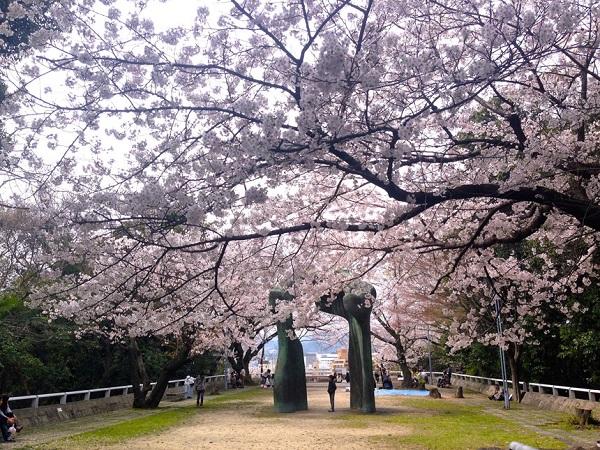Công viên Hijiyama: Công viên Hijiyama nằm ở phía đông trung tâm thành phố và là địa điểm ngắm hoa anh đào nổi tiếng trong mùa xuân. Không giống như những công viên được xây dựng, trang trí kiểu cách, công viên Hujiyama khiến du khách liên tưởng đến những khu rừng vẫn còn hoang sơ, chưa được nhiều người biết đến. Ngoài ra, đến công viên, du khách còn có thể ghé thăm bảo tàng nghệ thuật hiện đại và bảo tàng truyện tranh Manga. Ảnh: Nit.pt.
